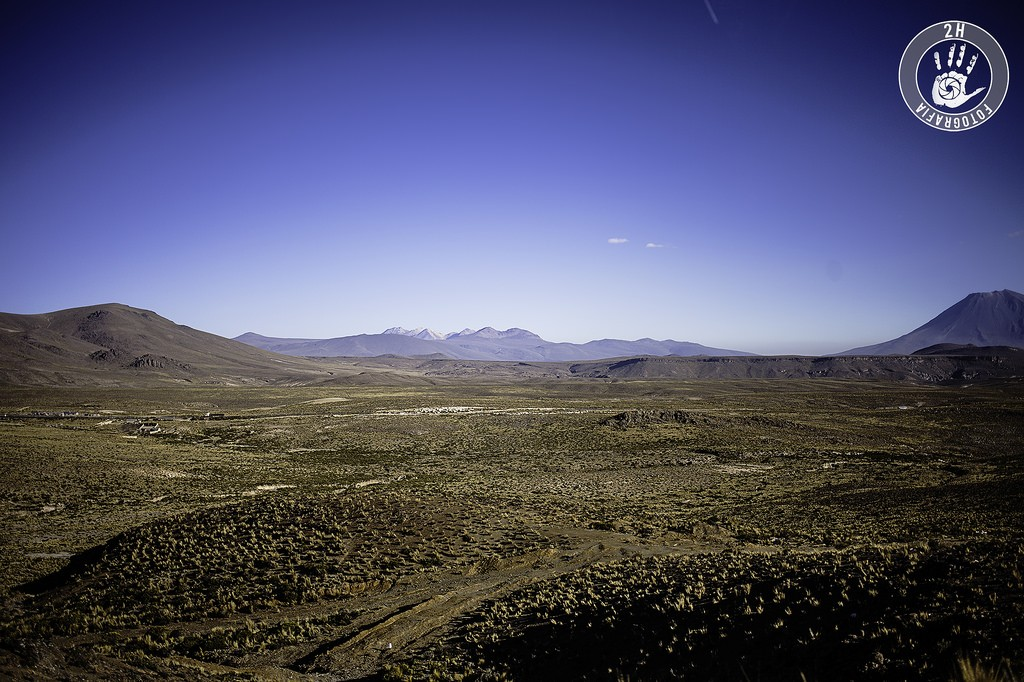 Altiplano peruano