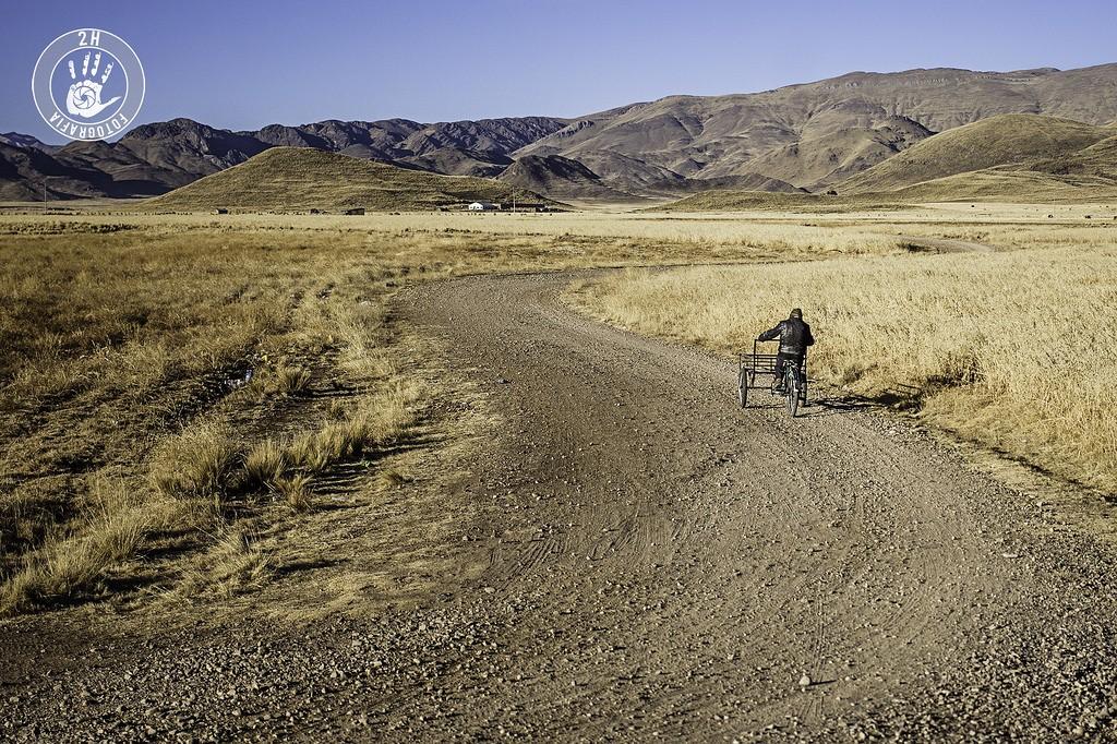 Atravesando los campos